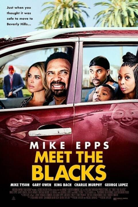 Meet the Blacks (2016) poster