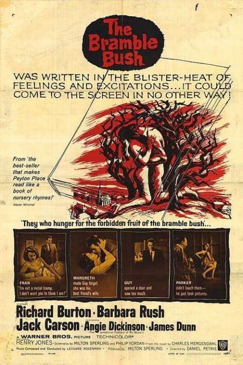 The Bramble Bush poster