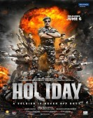 Holiday (2014) poster