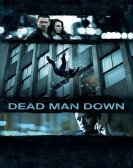 Dead Man Down (2013) Free Download