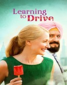 Learning to Drive Free Download