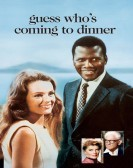 Guess Who's Coming to Dinner (1967) Free Download