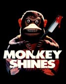 Monkey Shines (1988) Free Download