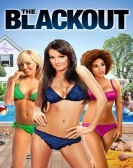 The Blackout (2013) Free Download
