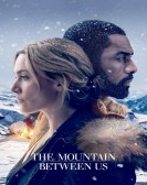 The Mountain Between Us (2017) Free Download