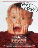 Home Alone (1990) Free Download