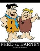 The New Fred And Barney Show poster